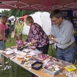 mangotsfield festival 2016 stalls 04578